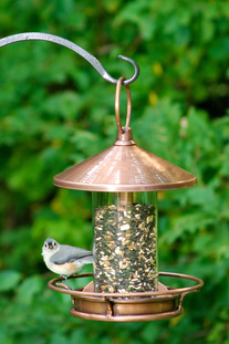 classic perch venetian bronze bird feeder
