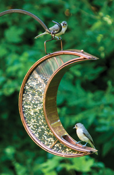 crescent moon venetian bronze bird feeder