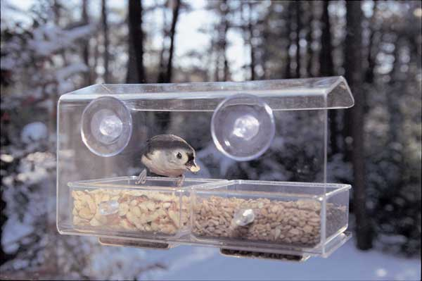Dual Seed Window Bird Feeder